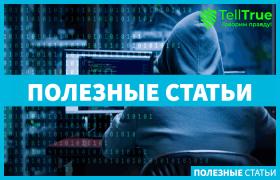 Хакерские атаки были приостановлены Интерполом, операция Фалкон прошла успешно