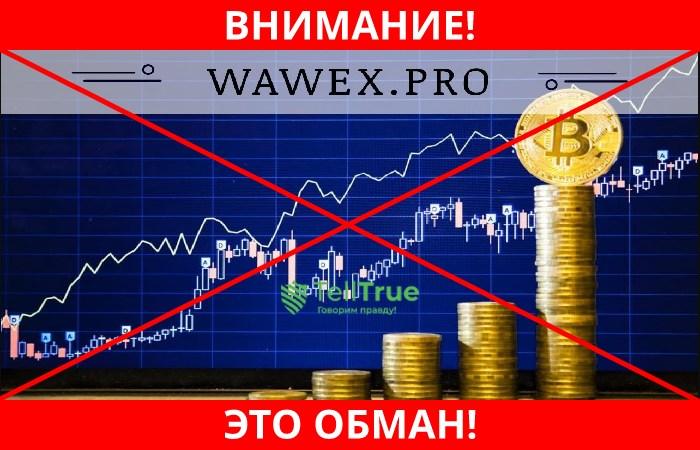 Wawex лохотрон