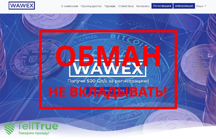 Wawex – отзывы