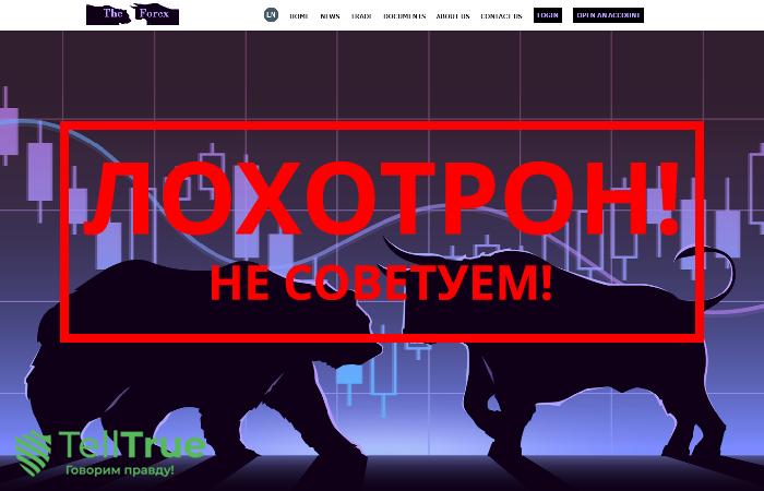 TheForex Cash – отзывы