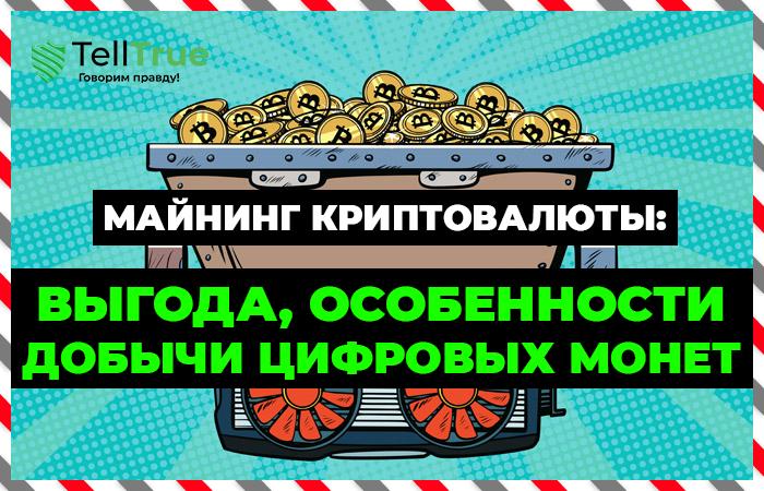 Майнинг криптовалюты: выгода, особенности добычи цифровых монет