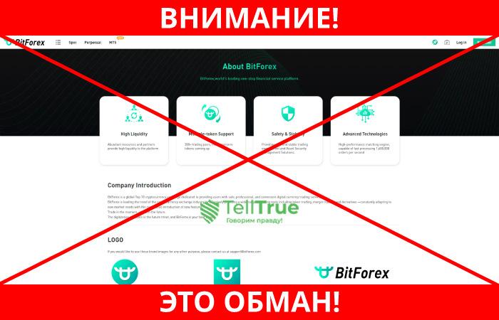 BitForex обман