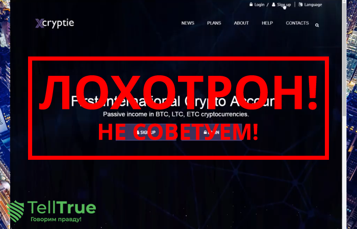 Xcryptie – отзывы