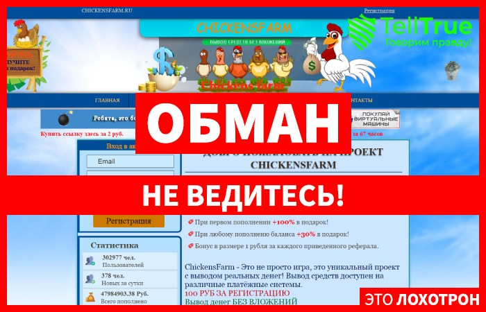 Chickens Farm – отзывы