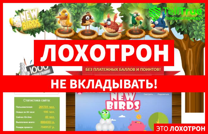 New Birds – отзывы