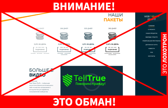 Web Token Profit лохотрон