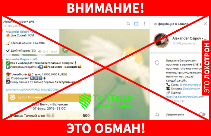 Александр Осипов лохотрон