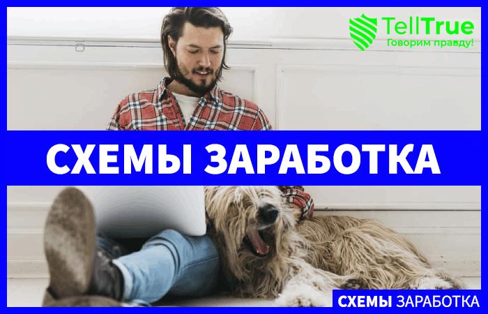 Как заработать с помощью домашнего животного?