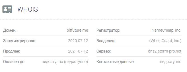 информация о домене Bitfuture