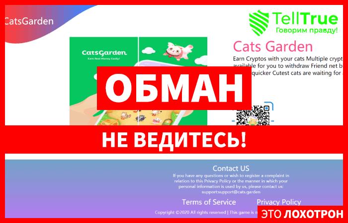 Cats Garden – отзывы