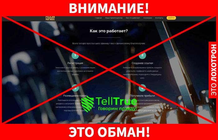 Pelican Partners обман