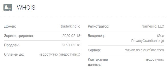 Информация о домене TraderKing