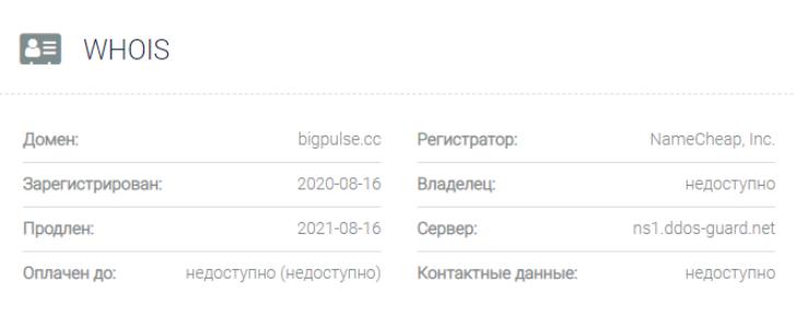 Bigpulse - основная информация