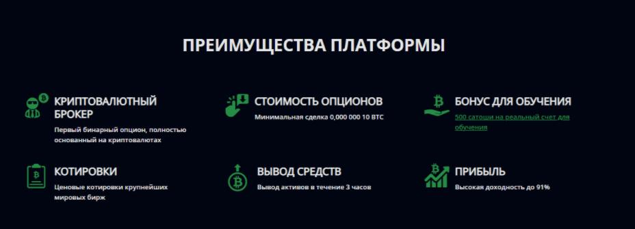 Cryptobo - предложения