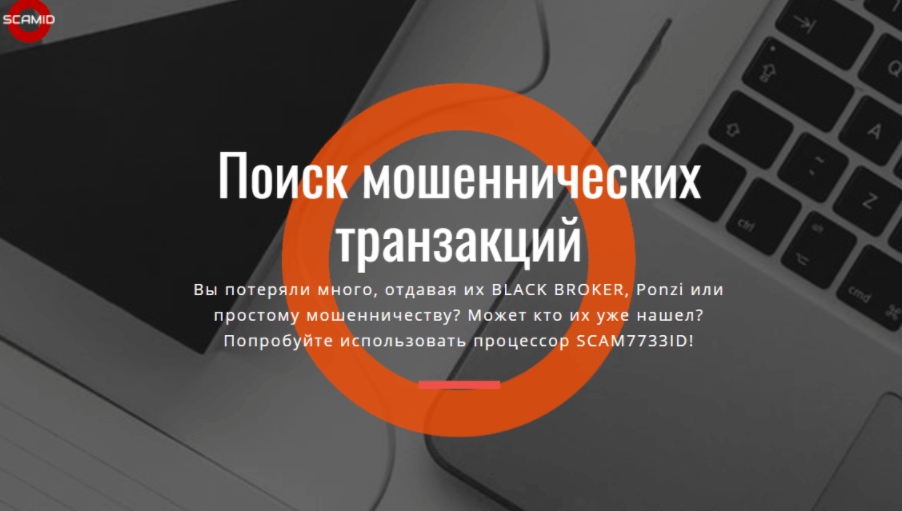 Scamid - сайт компании