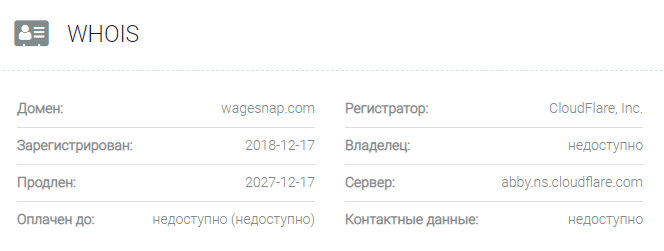 обзор официального сайта Wagesnap