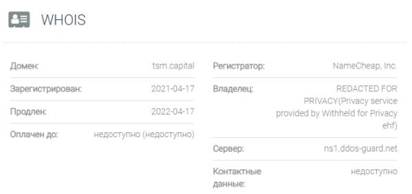 обзор официального сайта Technology Smart Money