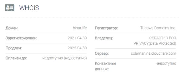 обзор официального сайта Binar Life