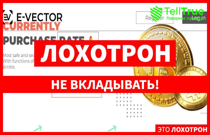 E-Vector главная