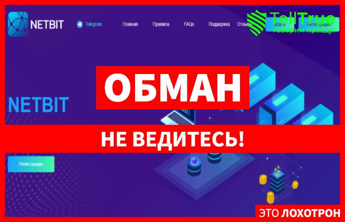 Netbit – обычный хайп, не заслуживающий и капли внимания