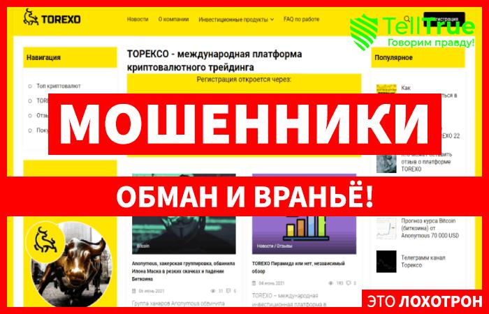 Torexo – реальный заработок на криптовалюте или очередной развод от дешевого хайп-проекта?