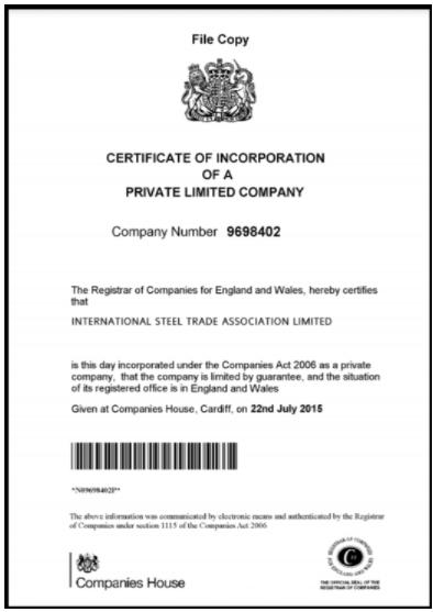 регистрационный сертификат Intersteel Inc