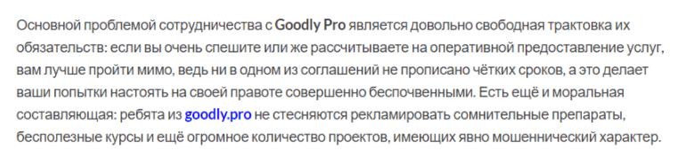 трактовка обязательств GoodlyPro