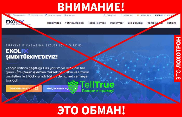 EkolFX company это обман